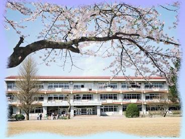 河北小学校の画像1