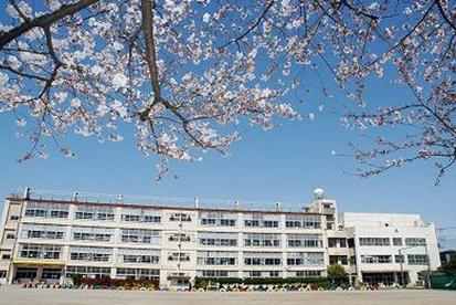 上青木西小学校の画像1