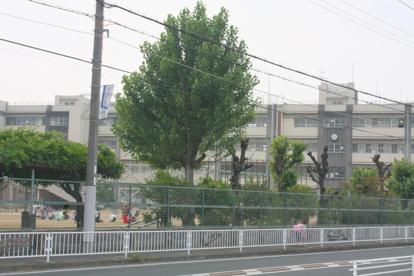 高石市立 加茂小学校の画像3