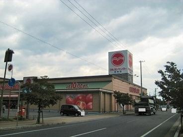 マルヨシセンター 西条店の画像1