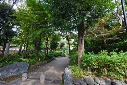 江原屋敷森緑地の画像1