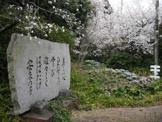 京都市立 安朱小学校