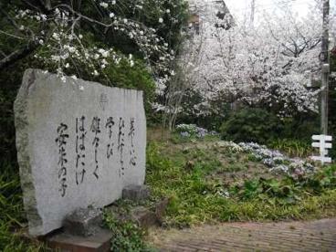 京都市立 安朱小学校の画像1
