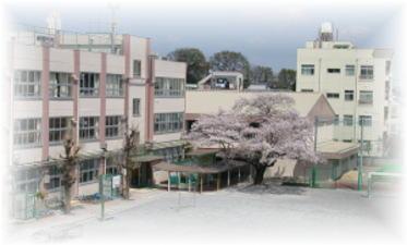 区立白桜小学校の画像1