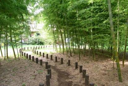 若宮の森緑地の画像1
