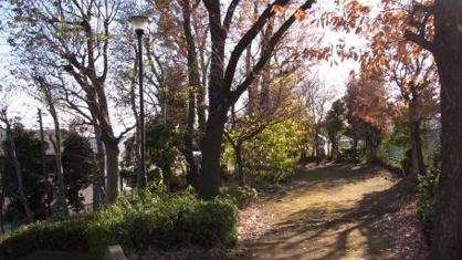 早淵の森緑地の画像1