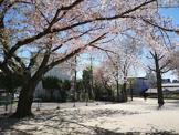 杉並区立和田さくらの坂公園