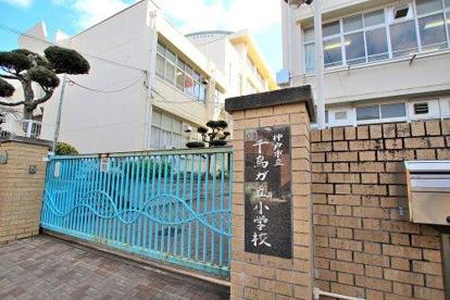 神戸市立千代が丘小学校の画像1