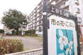 上砂五公園