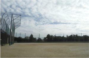 大和公園の画像3