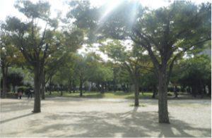 大和公園の画像4