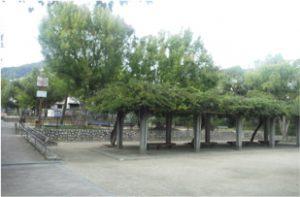 篠原公園の画像2