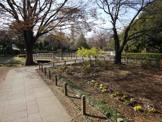秋の陽公園