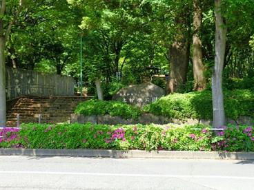 上仲原公園の画像1