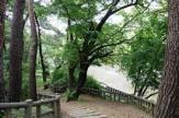 東京都立和田堀公園済美山自然林