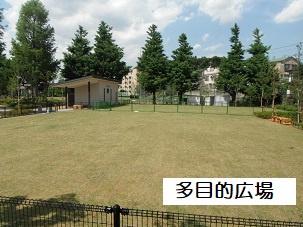 練馬総合運動場球技場の画像1