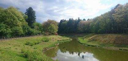 みずほの自然の森公園の画像1