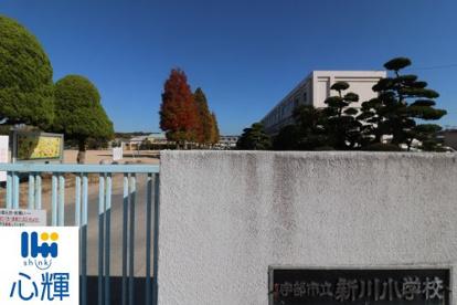 新川小学校の画像1