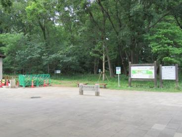 東村山中央公園の画像1