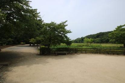 北山公園の画像2