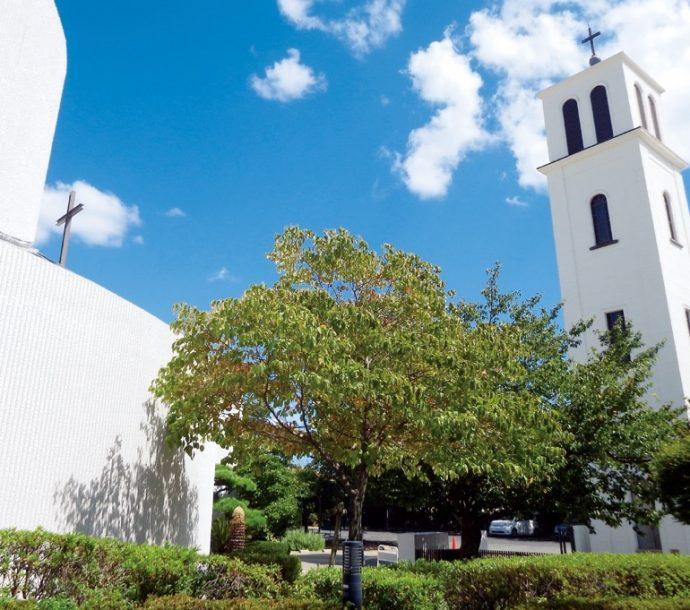 カトリック六甲教会の画像