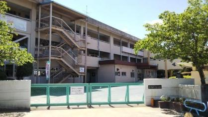 中島小学校の画像1