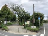 ゆりの木公園