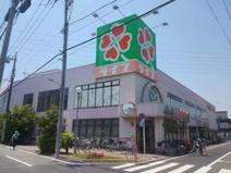 ライフ 葛飾鎌倉店