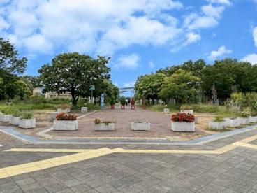 芦屋市総合公園の画像1