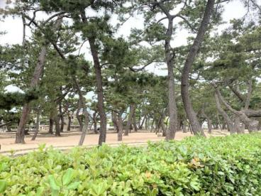 芦屋公園の画像1