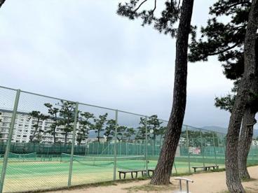 芦屋公園の画像2