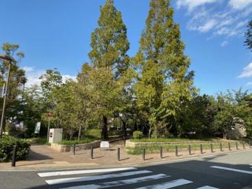 津知公園の画像1
