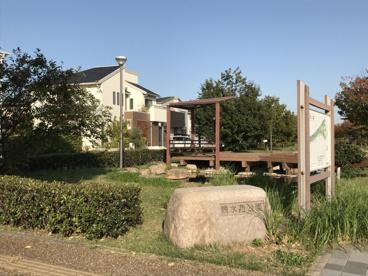親水西公園の画像1
