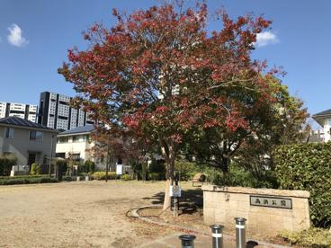 高浜公園の画像2