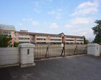 渋川南小学校
