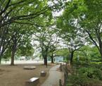 練馬区立平成つつじ公園