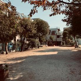 本庄町公園の画像1
