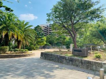 野寄公園の画像2