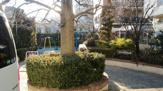 ふうの木児童公園