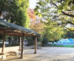 練馬区立夏の雲公園