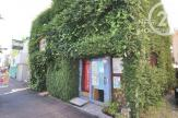 木を植えるレストラン オーロラ