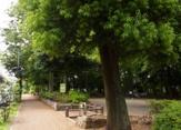 こぐれの森緑地