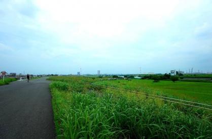 江戸川河川敷緑地の画像1