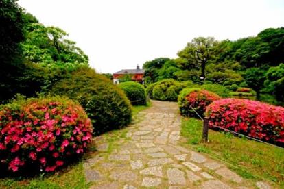 小石川後楽園の画像1