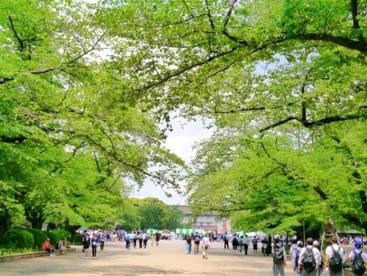 上野恩賜公園の画像1