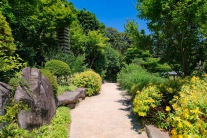 目白庭園の画像1
