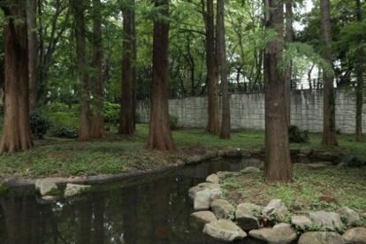 都立林試の森公園東門の画像1