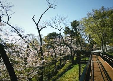 多摩川台公園の画像1