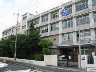 巽東小学校の画像1