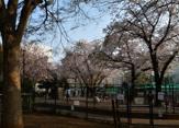 新宿区立落合公園 犬の広場(ドッグラン)